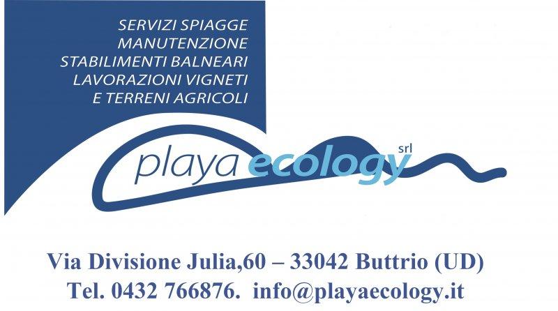 Playa Ecology
